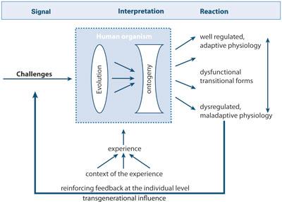 epigenetic mechanism